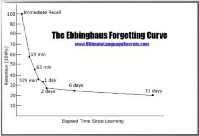 速読が子どもの学力に与える影響