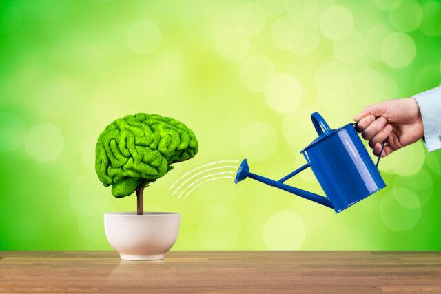 速読と記憶のメカニズム