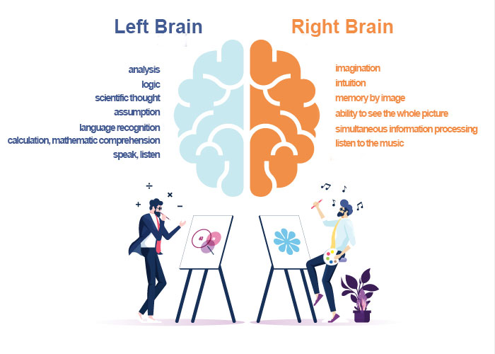 Difference between right and left brain